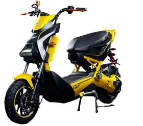 Xe đạp điện Tako
